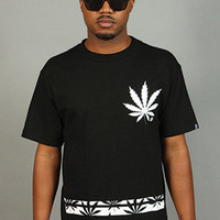 BREEZY EXCURSION ONLINE SHOP/STORE/SPENDING CENTER  — Bud Leaf Rugby Tee Black