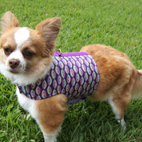 Purple Geometric Dog Harness