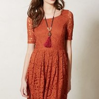 Foliage Lace Dress by Bordeaux