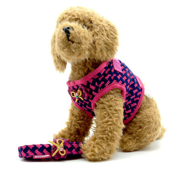 Cherry Pink Dog Harness and Leash Set