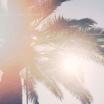 Venice Beach Photography, California, Palm Tree, Sunshine, Ocean, Seaside, California Wall Art