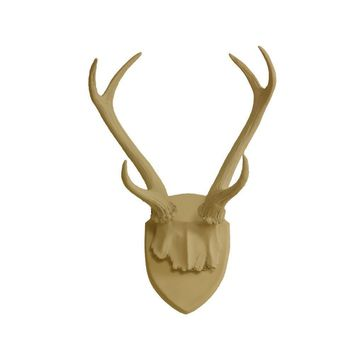 Antler Wall Mount | Deer Antler Rack | Faux Taxidermy | Khaki Brown Resin