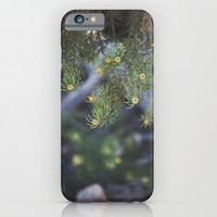 Summer in Big Bear iPhone & iPod Case by CMcDonald | Society6