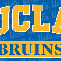 Ucla Bruins 3 Ft. X 5 Ft. Flag W/Grommets