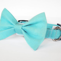 Aqua blue - cat and dog bow tie collar set
