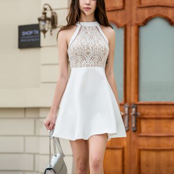 Fashion sexy lace hollow gauze splicing halter show thin dress