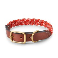All Dogs On Deck Dog Collar