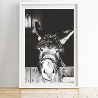 Donkey Photography,Donkey Wall Decor,Donkey Print,Black and White Donkey Photography,Donkey Print,Animal Photography,Nature Photoraphy