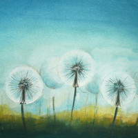 Dandelions Watercolor Painting  - Original Watercolor Flower Art Painting - Wild Flower