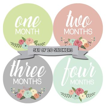 Baby Girl Monthly Baby Stickers - Baby Month Deluxe Sticker Set of 20