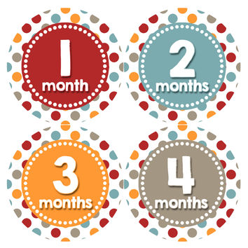 Baby Boy Monthly Milestone Age Stickers Style #336