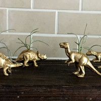 4 mini gold mixed dinosaur magnets with air plant- decor accessories- Office Accessories-Dinosaur Theme gift