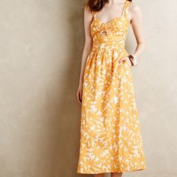 Helenium Maxi Dress