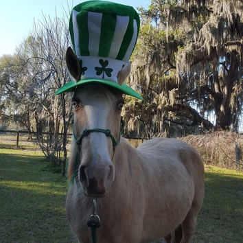 Leprechaun Stove Pipe Hat for Horses -- Soft Equine Shamrock Hat - Fun St. Patrick's Day Horse Costume