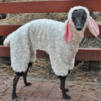 Wolf In Sheep's Clothing Dog Costume