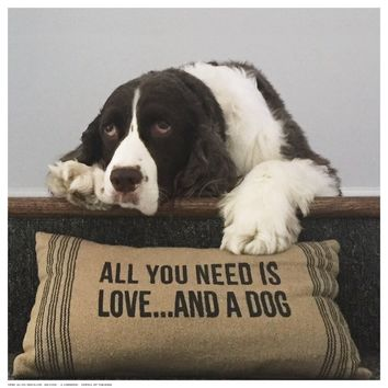 All You Need Is Love ... And A Dog K. Lowenkron Art Print