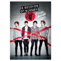 5SOS: Official 2015 Calendar