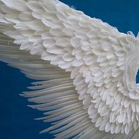 Cosplay Costume Wings Large Beautiful Feather Angel Wings White