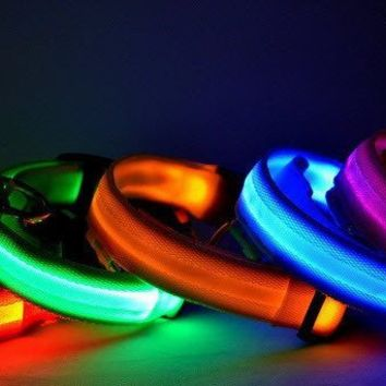Glow in the Dark Nylon Dog Collar