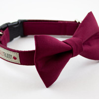 Solid Burgundy Wedding Dog Bowtie Collar