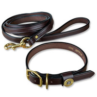 Beautiful leather dog accessory -