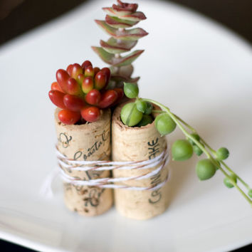 100Succulent Mini Garden Recycled Wine Corks, Wedding Favors, Succulents, Vintage Corks