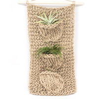 Trio Air Plant Hanger