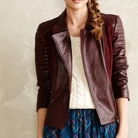Quilted Leather Bomber by Elevenses Wine