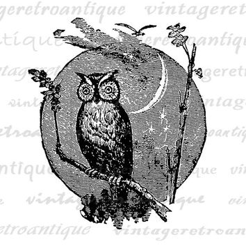 Owl Image Digital Download Owl with Moon Graphic Printable Artwork Vintage Clip Art Jpg Png Eps  HQ 300dpi No.4560