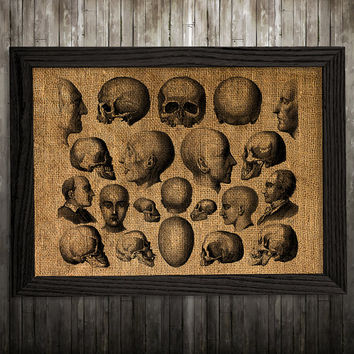 Medical poster Skeleton print Skull print Anatomy decor BLP935