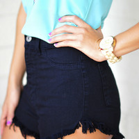 High And Mighty High Waisted Shorts: Black | Hope's