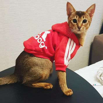 Pet Cat Clothes Winter Warm Soft Cat Jacket Coat For Small Cats Sport Hoodie Costume Kitten Clothing Puppy Dog Clothes