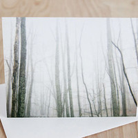 Four cards, modern blank note cards, all occation, nature photography by Julia Paul Pottery.