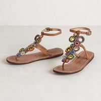 Malindi Beach Sandals by Laidback London Assorted