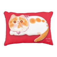 Cute exotic persian cat pillow