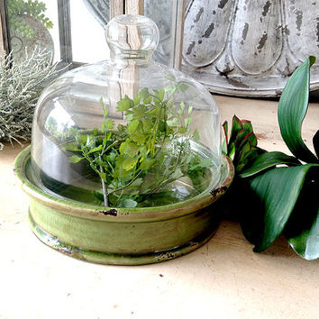 Best Succulent Planter Boxes Products On Wanelo