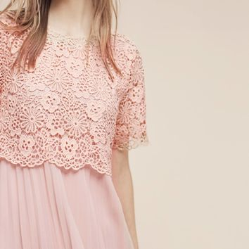 Adanne Lace Dress