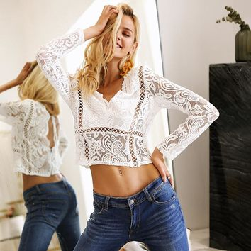 Hollow out Long sleeve lace crop top
