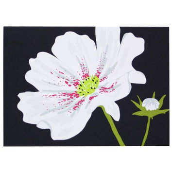 Cosmos Flower Boxed Note Cards