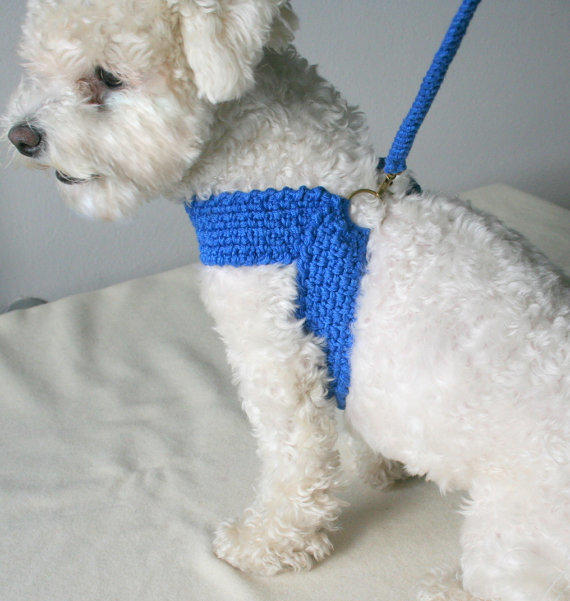 full_size friendly harness with matching leash, dog from bubadog on etsy