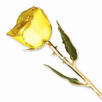 Lacquer Dipped Gold Trim Yellow Rose