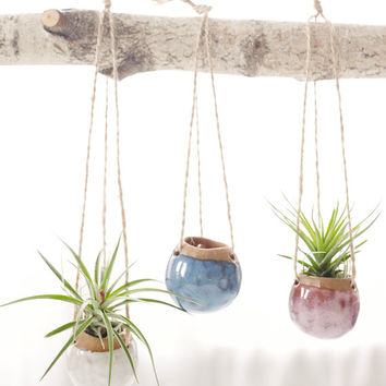 Set of Three Small Hanging Planters.  Planters for Airplants in Oasis, Fire Opal, and White