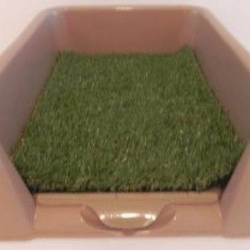 "Rascal Dog Litter Box ""Little Squirt"" (tm) - 23 by 16 by 6 FOR TOY BREEDS"