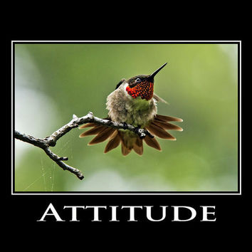 Attitude Inspirational Motivational Poster Art Print