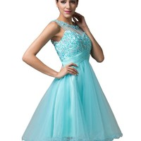 Elegent Sleeveless Tulle Evening Dresses (4)
