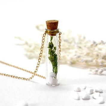 Glass Bottle Necklace, Natural Dried Flower Necklace, Green Grass wth Stone, Bottle Pendant