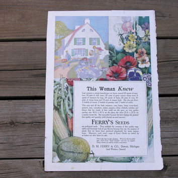 Antique Ferry Seed Catalog Ad This Woman Knew 1919 Ferry's Seeds Vintage Cottage Garden Style