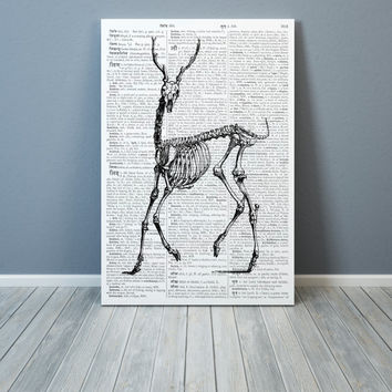 Deer Skeleton print  Black and white decor Anatomy poster Dictionary art